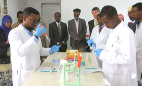 Lab technicians demonstrate on DNA testing